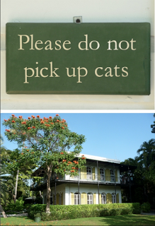 Hemingway House and Cats. There are always cats.