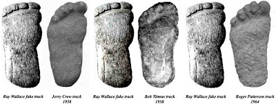 Comparing bigfoot track castings.