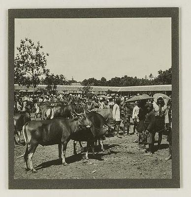 Kopang+1921.jpg