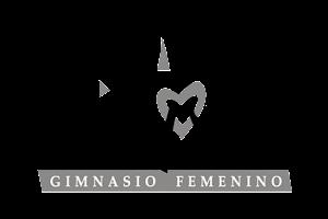 GIMNASIO FEMENINO DE L´ART