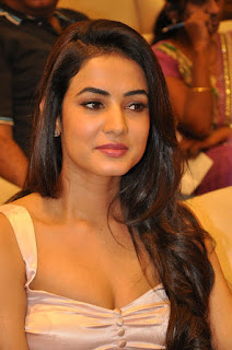Sonal Chauhan in deep neck top black shirt At Pandaga Chesko Success Meet In Hyderabad