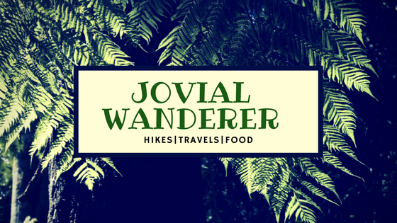 Jovial Wanderer
