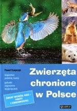 Zwierzęta chronione w Polsce - zobacz: