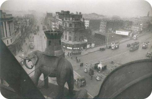 elephant gang london casino