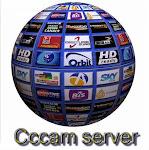 server cccam