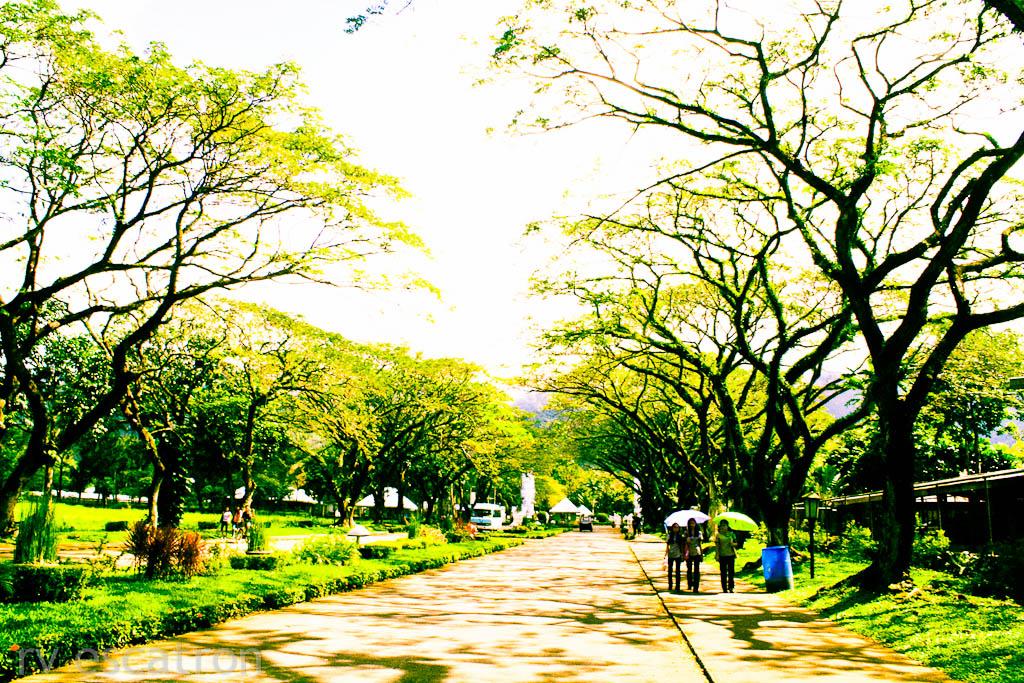 Masters thesis filipina saipan