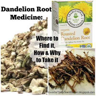 Dandelion Root Medicine Where to Find it How and Why to Use it