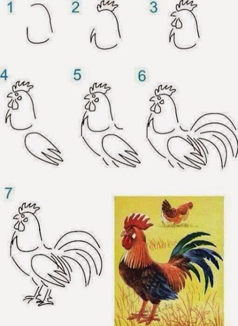 Learn to draw  a rooster for kids