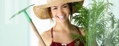 Seja Um Profissional Em Jardinagem E Paisagismo