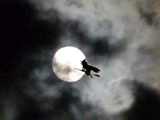 http://3.bp.blogspot.com/-uBellpWCaeQ/Tp3fY0BYdaI/AAAAAAAACkE/owhT-496ilI/s320/witch+and+moon.jpg