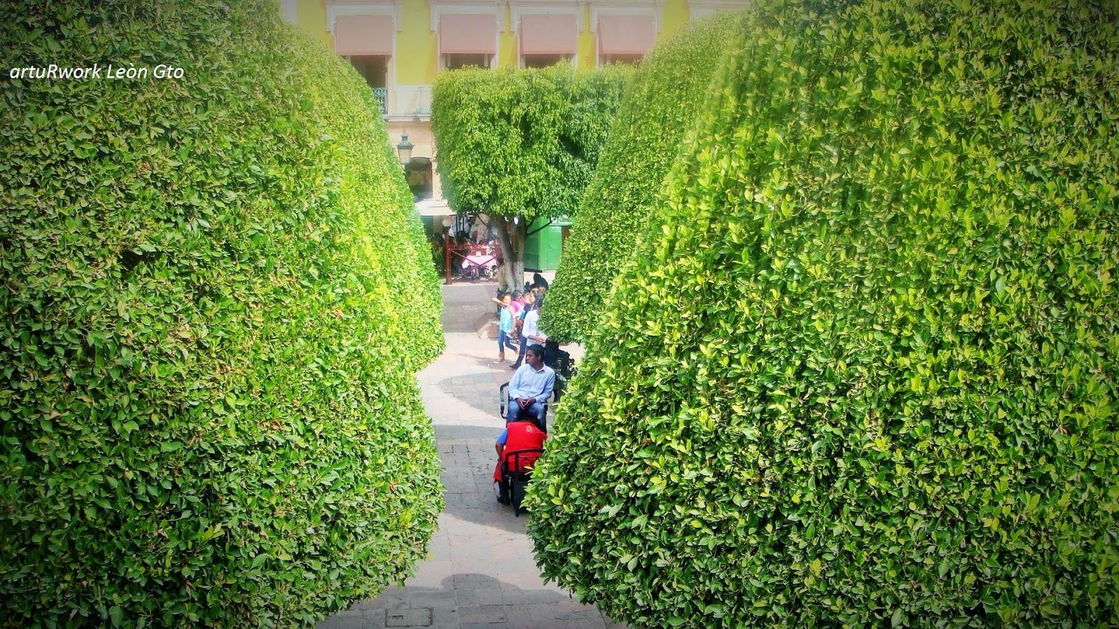 Ciudades mexicanas boleros mexicanos enn jardin principal for 7 jardines guanajuato