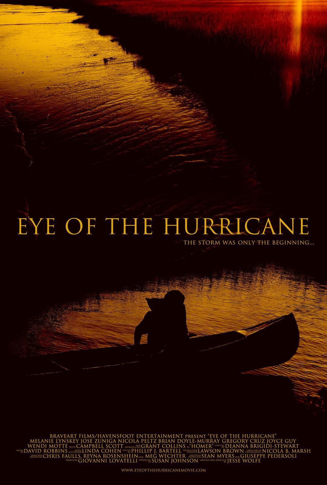 O Olho do Furacão – Dublado (2012)