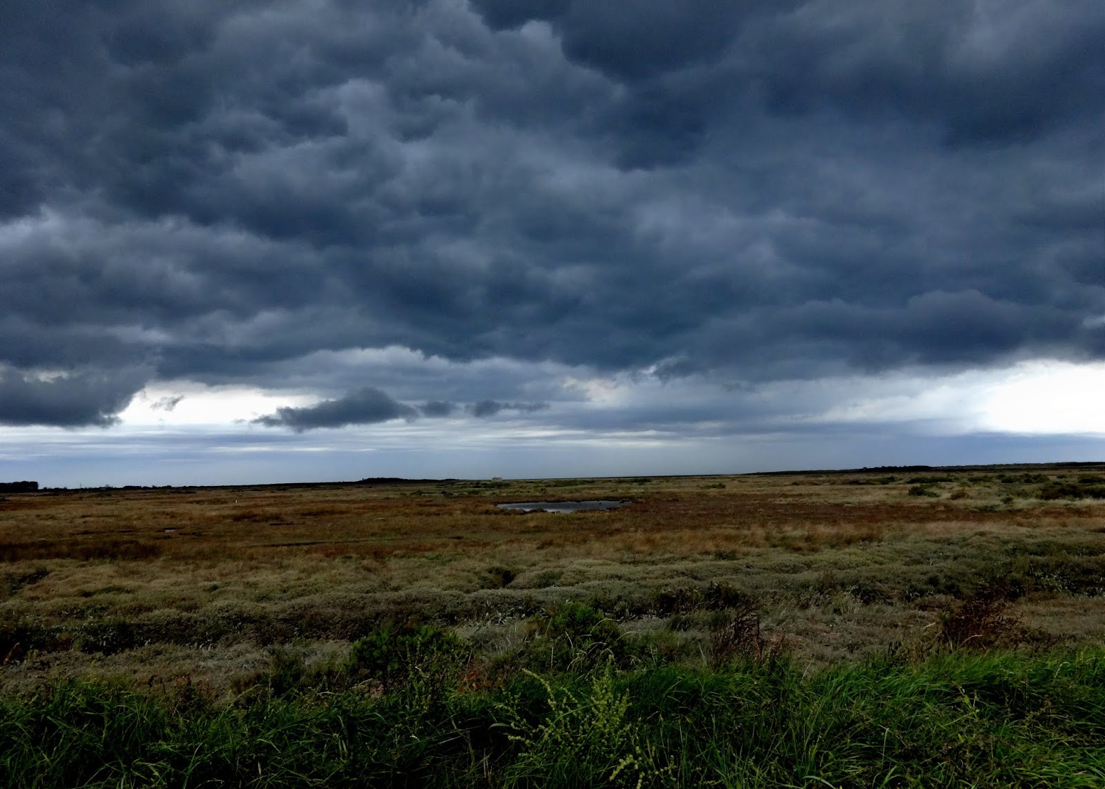 red steppe clouds - photo #43