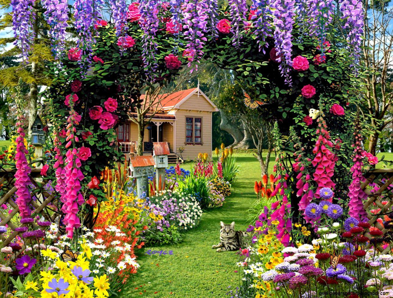 garden flower wallpapers background beautiful free hd for desktop