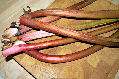 rhubarb, crops, allotment