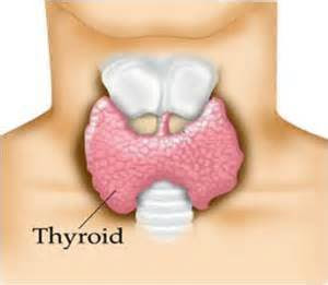 http://www.melaniesobocinski.net/2015/04/could-your-thyroid-be-issue.html
