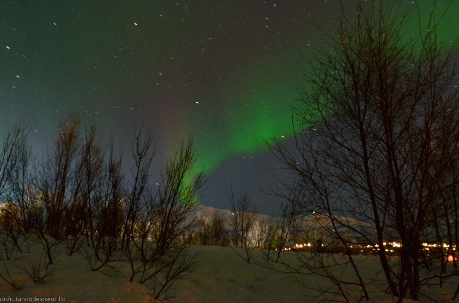 tromso, noruega, aurora boreal, northen lights