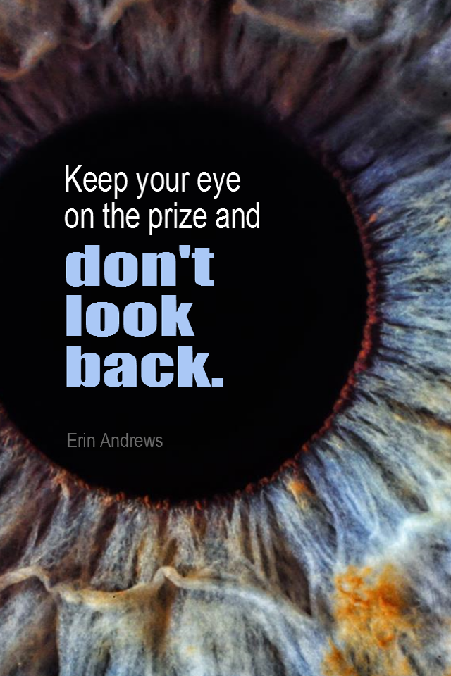 visual quote - image quotation for FOCUS - Keep your eye on the prize and don't look back. - Erin Andrews