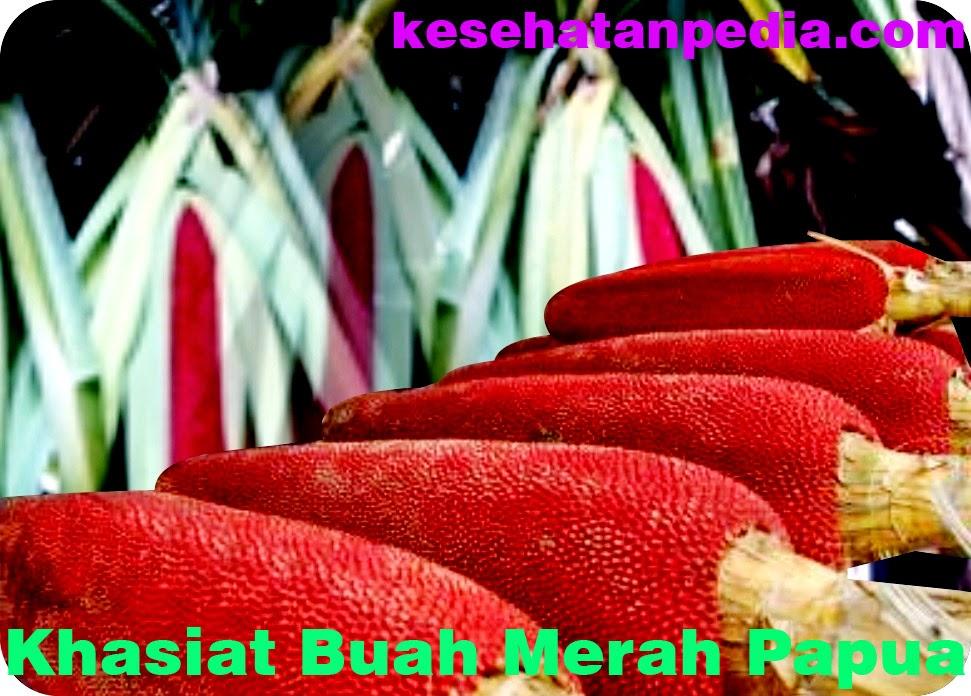 Khasiat Buah Merah Papua