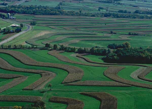Agro-Negócio - Centro-Oeste
