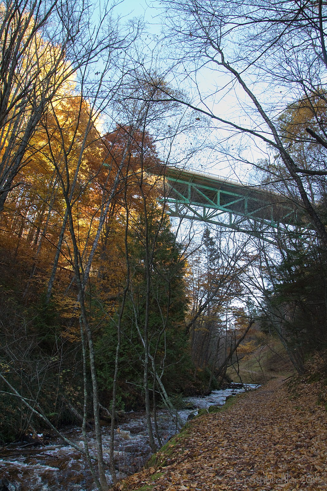 A scenic shot of a small rushing river with a leaf-covered trail on the right side. Colorful trees line the far side of the river and trees already bear lean over from the right. In the distance with a blue sky behind it, is the green trusses of the Cut River Bridge, high above the river.