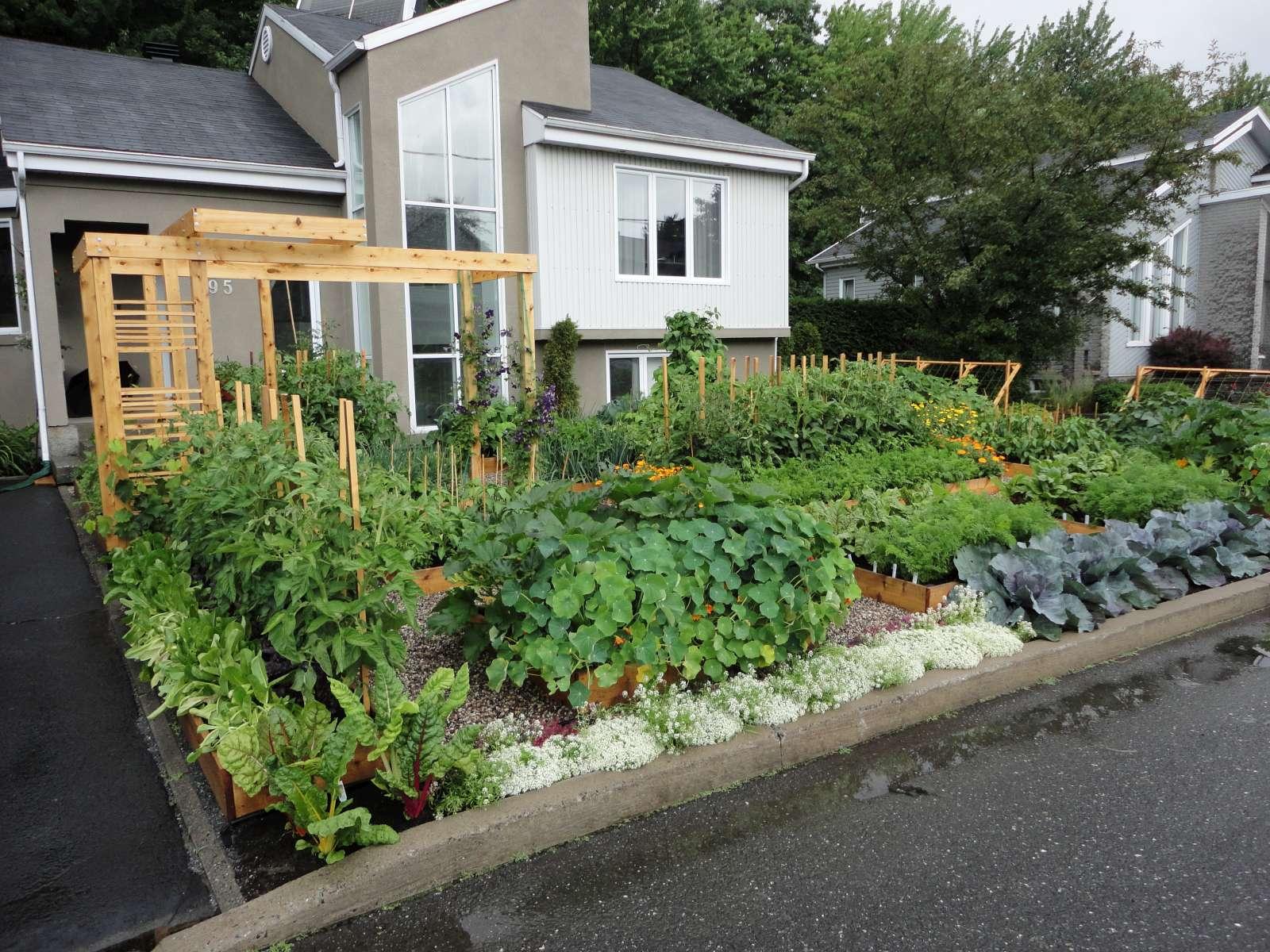 Le potager urbain vid o d 39 une visite virtuelle du potager for Jardin urbain permaculture