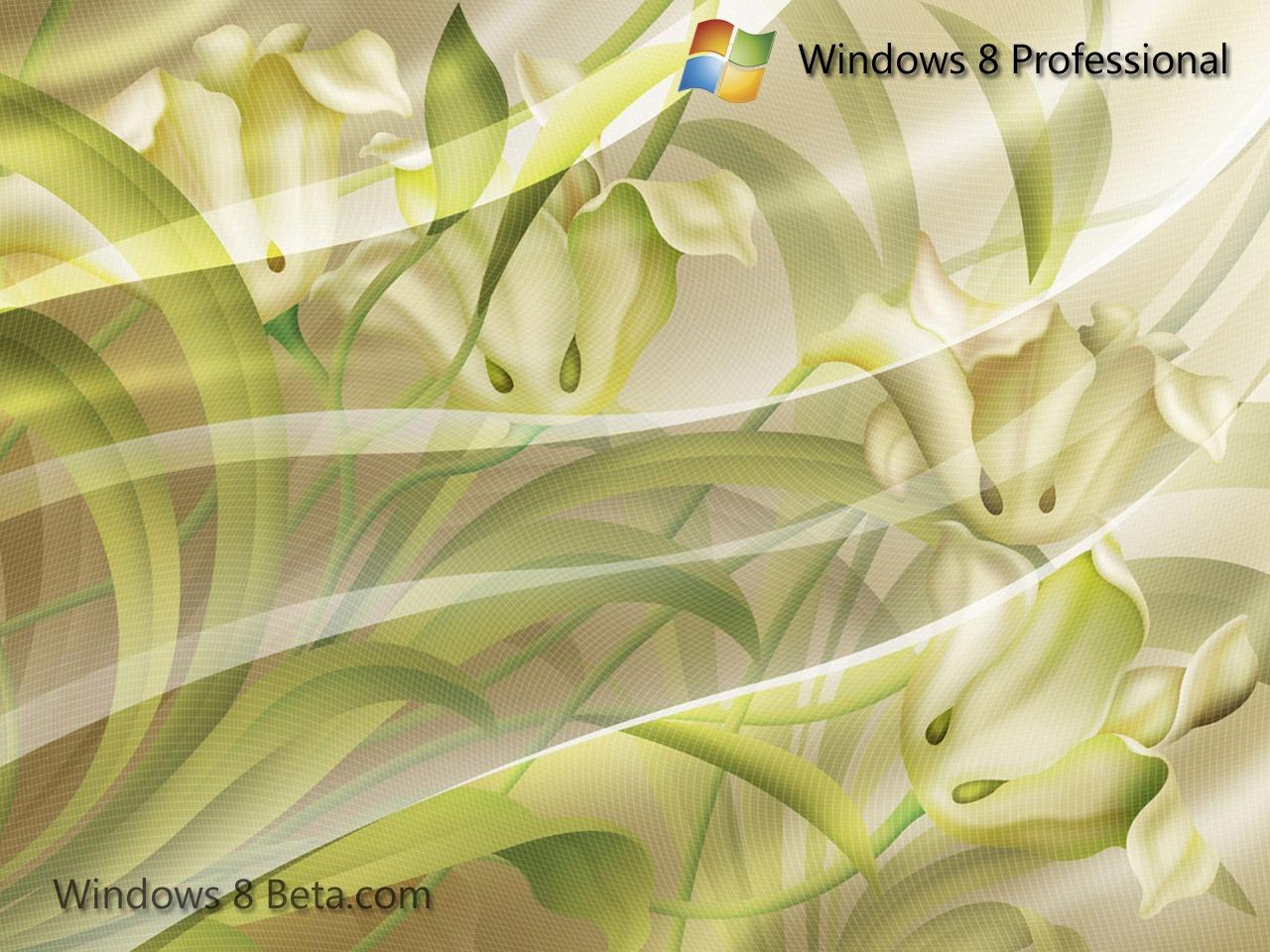 http://3.bp.blogspot.com/-uEcyXecc3xA/TfG09saW8AI/AAAAAAAACEs/TKvTv8tsM2M/s1600/Windows-8-wallpaper_4.jpg