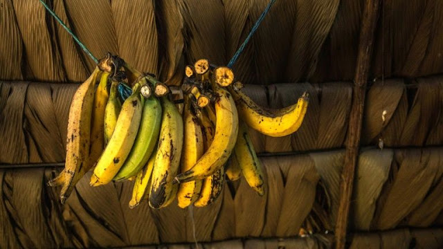 Police Officers Forcefully Feed A Gold Chain Thief With Over 40 Bananas, Here's Why
