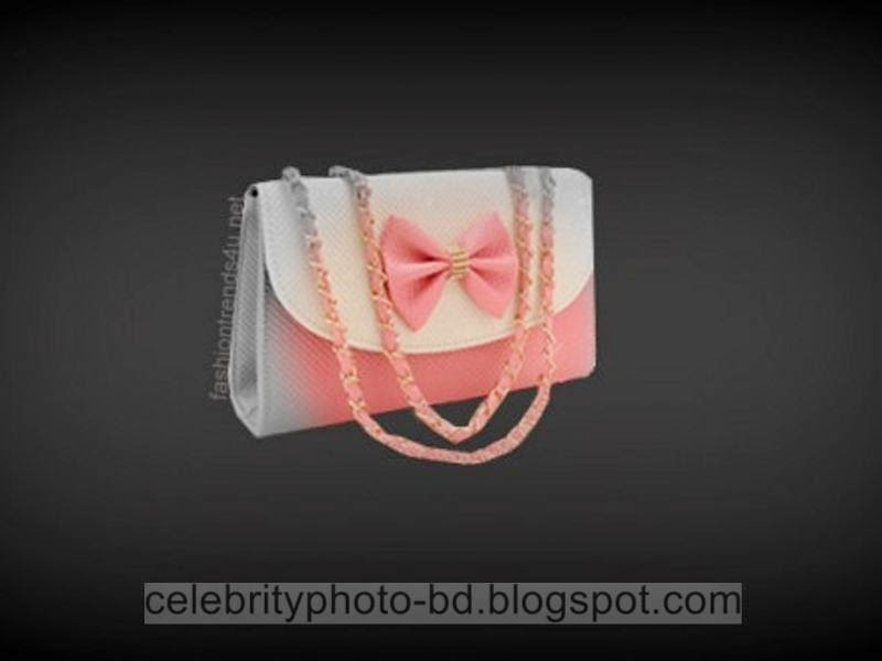Latest+Fashionable+Vanity+Bag's+Photos+Collection+For+Modern+Generation+Girls+&+Ladies+2014 2015007