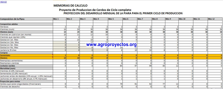 Desarrollo de piara en Excel