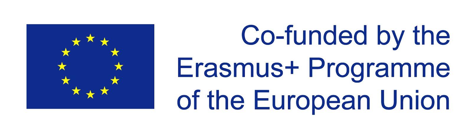 Erasmus Bridge Project