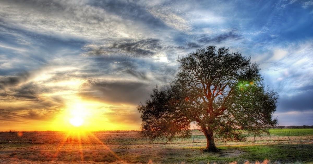 banco de fotos paisajes con efecto hdr   hdr photos
