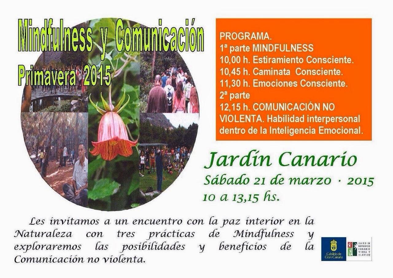 Ceip santa catalina un paseo por el jard n canario for El jardin canario