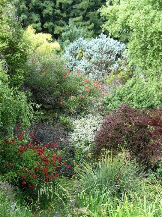 Habiterra paisaje en tu jard n 29 05 11 5 06 11 - Cortavientos de jardin ...
