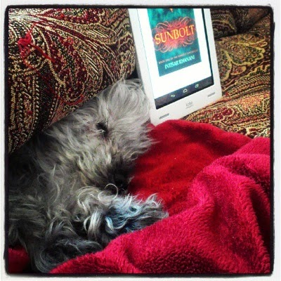 Murchie flops beneath a tapestry comforter, all his feet tucked up beside his head. Behind him sits a white e-reader with Sunbolt's cover on its screen. The cover is primarily blue with the title in yellow surrounded by an orange cloud. Only the lower half of the title is visible.