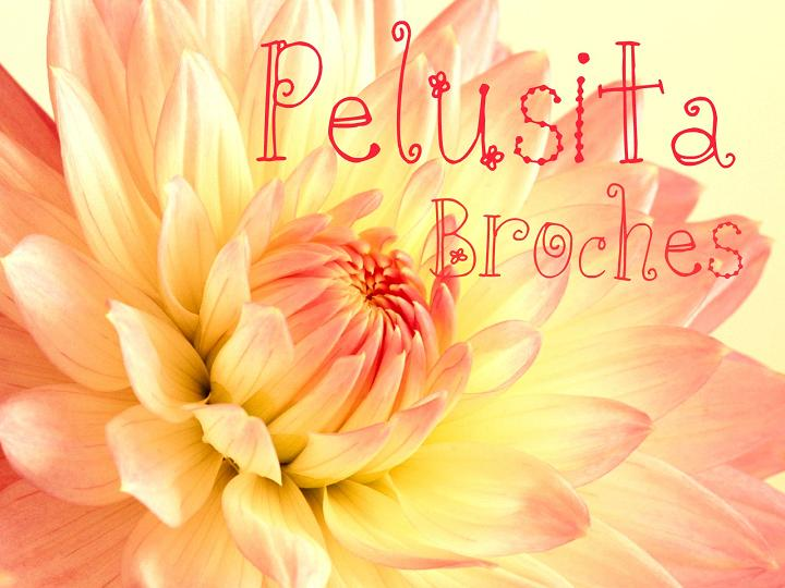 Pelusita Broches