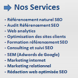 Agence de Référencement Naturel et Web Marketing