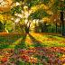 Γιατί το φθινόπωρο είναι ευεργετικό για την υγεία;