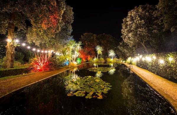 Abbotsbury Illuminations 50% Off Online Tickets
