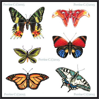 Butterflies / Acrylique