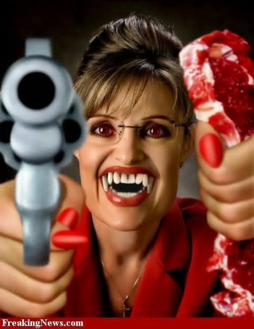 Sarah Palin halloween costume