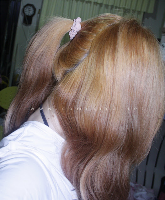 Cominica Blog ♔ Palty Bubble Hair Dye In Candy Ash