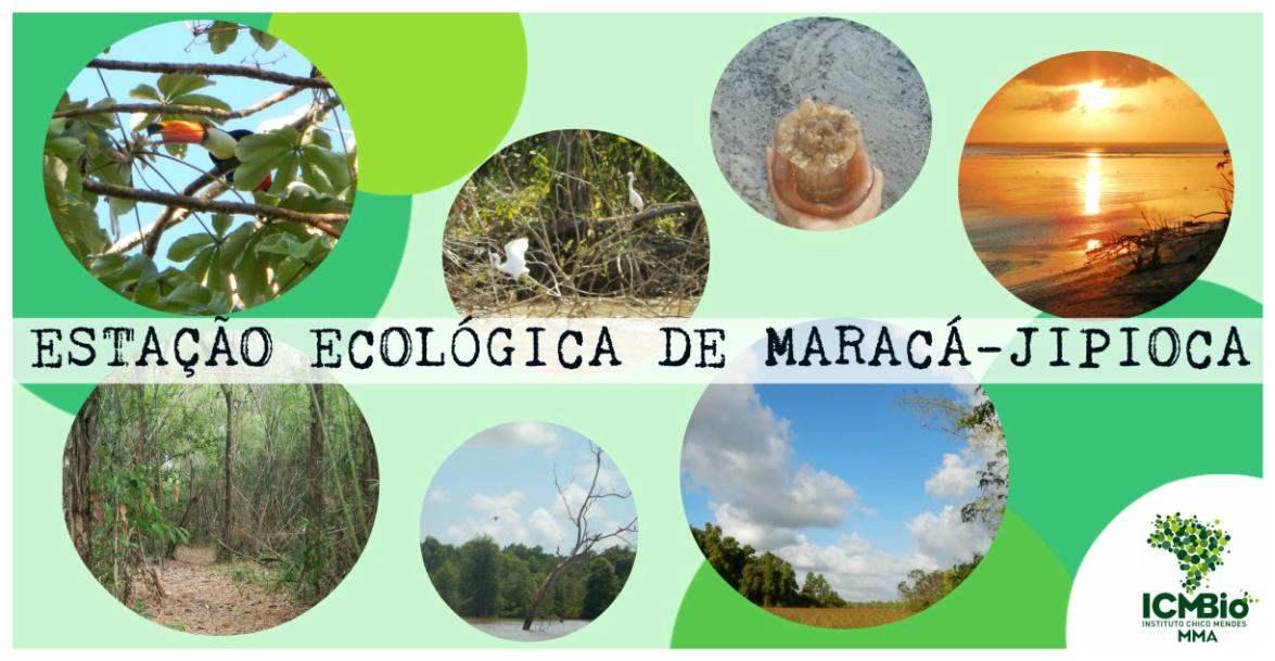 Conselho Consultivo da Esec de Maracá-Jipioca