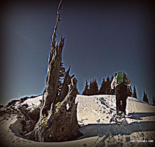 snowshoe hurricane hill