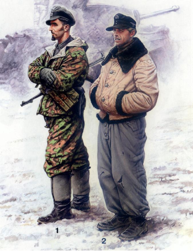 spesso la biblioteca militare: L'esercito tedesco nella seconda guerra  CS62