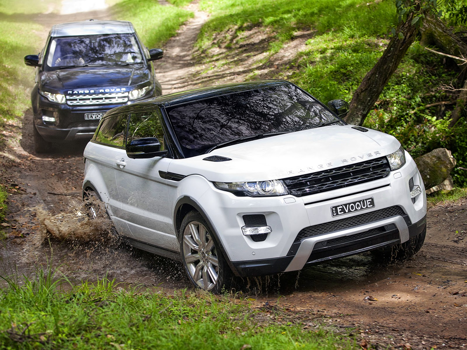19 range rover evoque the ultimate luxury compact crossover auto review. Black Bedroom Furniture Sets. Home Design Ideas