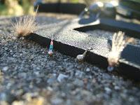 Moscas para la pesca de truchas