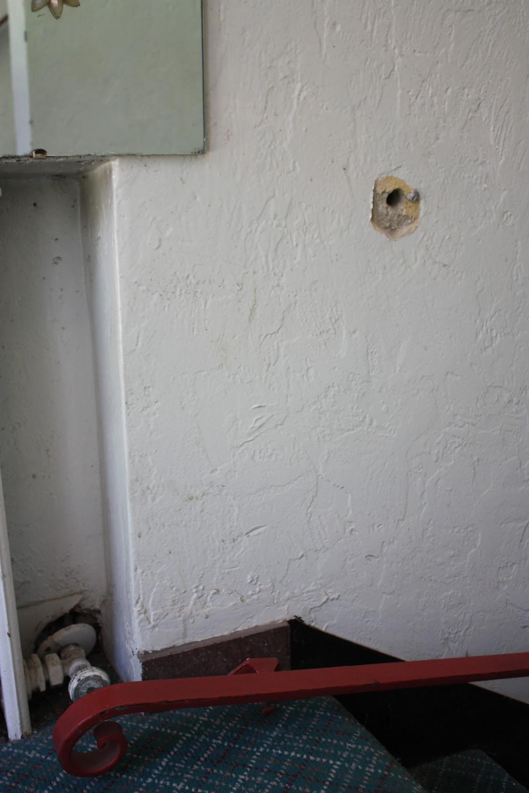 Leaking Bathroom Ceiling June 2011