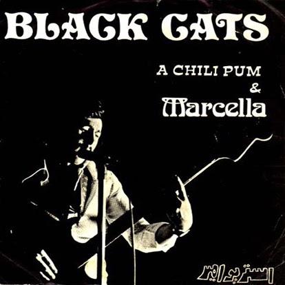 Black Cats A Chili Pum Marcella