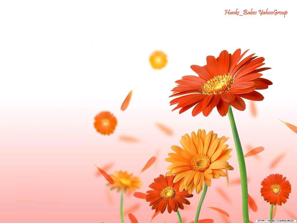 Background cartoon flowers